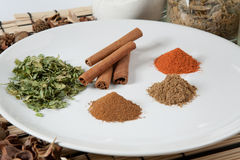Plate with different spices Stock Image