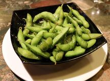 Plate of edamame at Japanese sushi restaurant. In Costa Rica food japan vegetables healthy dinner lunch green beans pretty meal health restaurant royalty free stock photography