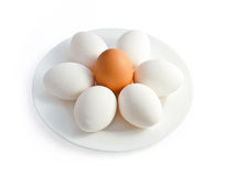 Plate with eggs Stock Photo
