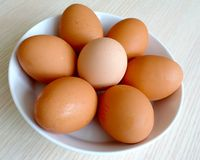 Plate of eggs Stock Photography