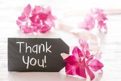 Hydrangea Blossom, Text Thank You Stock Photography