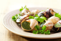 Plate of escargots Stock Photo