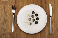 Plate with euro coins Royalty Free Stock Image