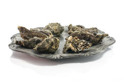 Plate of expensive oysters Royalty Free Stock Photography
