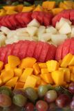 Fresh Summer Fruits. Plate filled with fresh summer fruits cut to cubes such as mango, grapes, water melon and melon sorted in rows Stock Photos