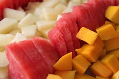 Fresh Summer Fruits. Plate filled with fresh summer fruits cut to cubes such as mango, water melon and melon sorted in rows Royalty Free Stock Images
