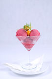 Plate of fine dessert - raspberry sorbet. Image of tasty raspberry sorbet stock image