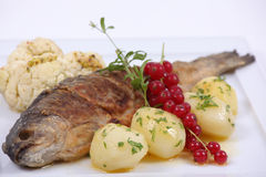 Plate of fine dining meal Royalty Free Stock Photo