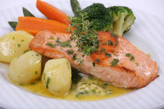 Plate of fine dining meal. Salmon steak in a buttery sauce with fresh parsley and lemon, served with boiled potatoes and an assortment of vegetables Royalty Free Stock Photography