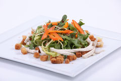 Plate of fine dining meal. A garden lettuce selection, served with grilled chicken breast and garlic toast Stock Photos