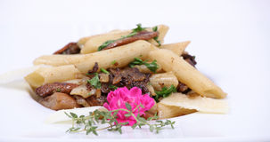 Plate of fine dining meal. Penne pasta in a forest mushroom sauce with garlic and parsley for extra flavour Royalty Free Stock Photography