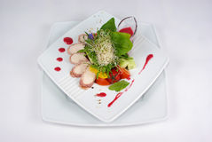 Plate of fine dining meal. Niceley decorated fine dining meal Stock Images