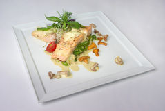 Plate of fine dining meal. Niceley decorated fine dining meal Royalty Free Stock Image