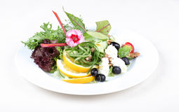 Plate of fine dining meal, fresh salad Stock Image