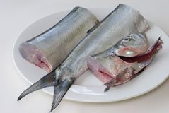 Plate of fish. A fresh ribbon fish on a plate, cut into three pieces ready for filleting Royalty Free Stock Images