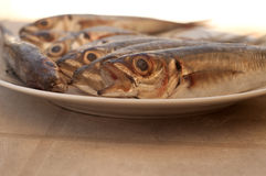 Plate of fished. Several fish in a plate Stock Images