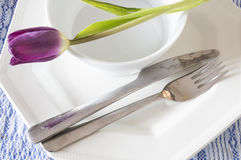 Plate fork and knife Stock Images