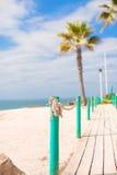 Plate-forme en bois sur le chemin vers la mer des palmiers dans Images stock