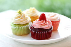 Plate of four colorful springtime cupcakes