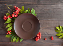 Plate in the frame of rowan berries and leaves Stock Image