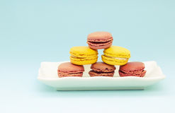 Plate of French Macaroons Stock Image