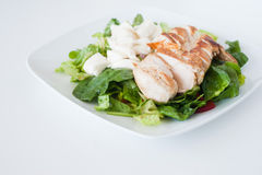 Plate of fresh chopped grilled chicken salad Royalty Free Stock Images