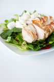 Plate of fresh chopped grilled chicken salad. On a white background Stock Photos