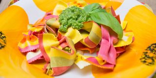 A plate of fresh and colorful ravioli pasta with pesto sauce and basil.  Royalty Free Stock Photo