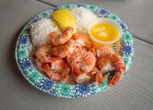 Plate of fresh cooked shrimp. A paper plate full of cooked shrimp and rice with lemon and butter Stock Images