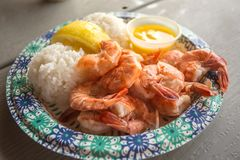Plate of fresh cooked shrimp. A paper plate full of cooked shrimp and rice with lemon and butter ready to eat Stock Image