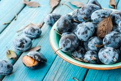 A plate of fresh Damson plums. On a blue rustic wooden background close-up macro Royalty Free Stock Photos