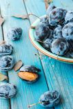 A plate of fresh Damson plums. On a blue rustic wooden background Royalty Free Stock Photography