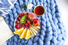 Plate with fresh fruit salad on a blue plaid with place for text. Plate with fresh fruit salad on a blue plaid with cup of tea and book Stock Images