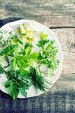 Plate with Fresh Green Leaves for natural decoration of Easter e Stock Images