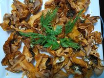 Cooked tangy tartlets with sweet caramelised onions Royalty Free Stock Image