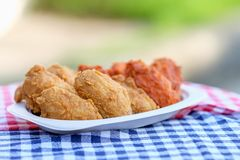 A plate of fresh, hot, crispy fried chicken Royalty Free Stock Photos