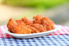 A plate of fresh, hot, crispy fried chicken Stock Photography