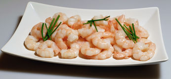 A plate of fresh prawns Stock Images