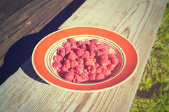 A plate of fresh raspberries. On summer day Stock Image