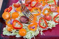 Plate of fresh salad with savoy cabbage, colorful tomatoes  Stock Image