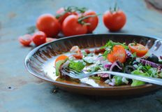Plate with fresh salad royalty free stock photography