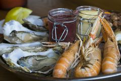 Plate of fresh seafood with ice. Oysters langoustines shrimp coastal snails Stock Photo