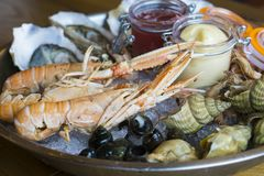 Plate of fresh seafood with ice. Oysters langoustines shrimp coastal snails Royalty Free Stock Images