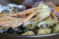 Plate of fresh seafood with ice. Oysters langoustines shrimp coastal snails Stock Image