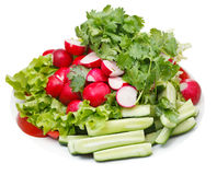 Plate with fresh season vegetables Stock Photography