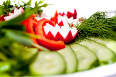 A plate of fresh sliced vegetables Royalty Free Stock Photos
