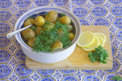 Plate Of Fried Baltic Herring Potato Red Onion And Parsley Stock Photography