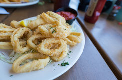 Plate of fried calamari. Stock Photos