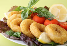 Plate of fried calamari ring Royalty Free Stock Images