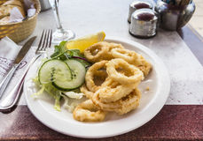 Plate of fried calamari (squid rings) with salad garnish Royalty Free Stock Photos